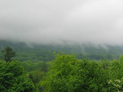 2008-may-20-tues-005.jpg
